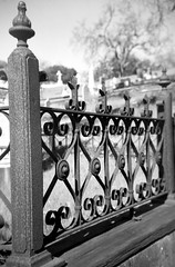 fenced in (a perhaps hand) Tags: blackandwhite cemetery graveyard northerncalifornia fence mediumformat 120film marincounty ornamental kodakbw400cn bakelite boxcamera browniebullseye 620camera mtolivet sanrafaelca vintagekodakcamera