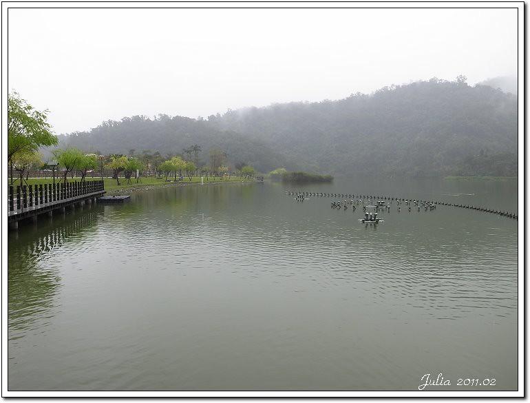 花湖 小熊書房  八甲魚場  勝洋水草 (2)