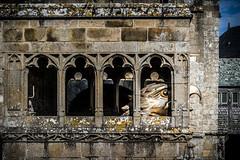 Hidden hawk (Rayoflightbe) Tags: normandi travel normandy mont saint michel abbey hawk architecture