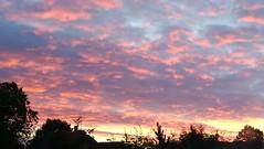 Sunrise continues in south Birmingham (ell brown) Tags: sunrise hallgreen birmingham westmidlands england unitedkingdom greatbritain tree trees clouds mobile mobileshots huawei huaweip9 schoolrd schoolrdhallgreen shirleyrd shirleyrdhallgreen roof roofs birminghamuk