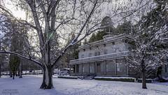 Winter at Bowers (Sintar) Tags: bowersmansion snow mansions lakewashoestatepark lake washoe eilley bowers winter trees nature morning