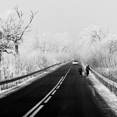 Heroines (DomiKetu) Tags: road travel trees winter sky blackandwhite bw white snow black cold tree cars ice monochrome car walking lumix grey gris mono frozen blackwhite topf75 europa europe frost path walk hiver frosty panasonic route ciel freeze romania neige icy eastern gel ost chemin est givre roumanie craiova iarna zapada rumnien rumanien oltenia dolj fz38 fz35 iarnainromania outstandingforeignphotographersvisitingromania cernele