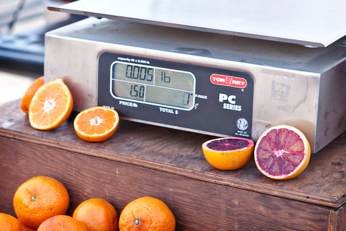 Cut Citrus and Scale