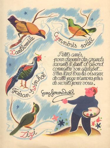 oiseauxfleurs p12
