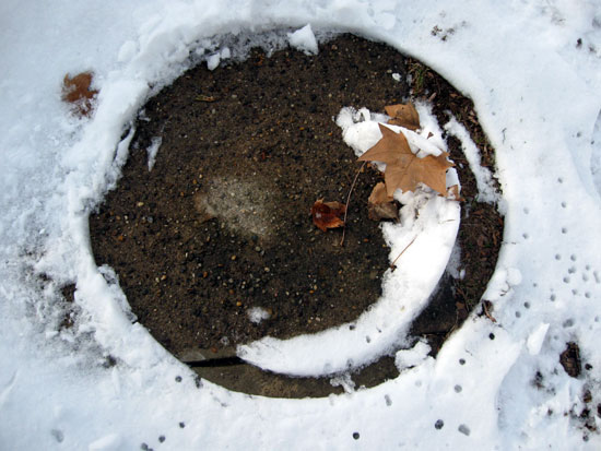 20100124-snow-circle