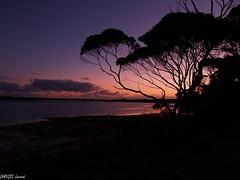 Sunset on Kangaroo Island (dangellaurent) Tags: sunset australia southaustralia kangarooisland coucherdesoleil australie