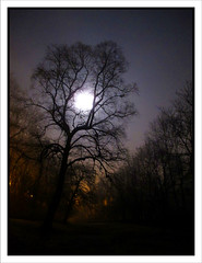 Full Moon Rising (moi_images) Tags: moon color colour tree night river rising full walkway kelvin
