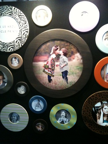 circle prints in Wild Sorbet frames
