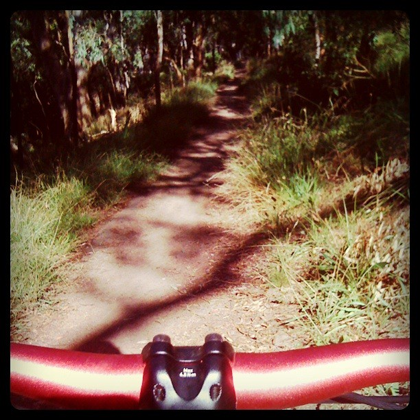 The contentious trail between Fairfield boathouse and Chandler Hwy, long time off-limits to MTB