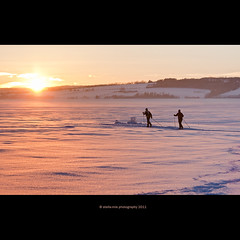 skiing at sunset (stella-mia) Tags: pink winter sunset orange sun snow ski ice yellow norway skiing lensflare hamar sn mjsa 70200mm onice hightlight helgya canon5dmkii lakemjsa annakrmcke nesandhelgya topeopleonice