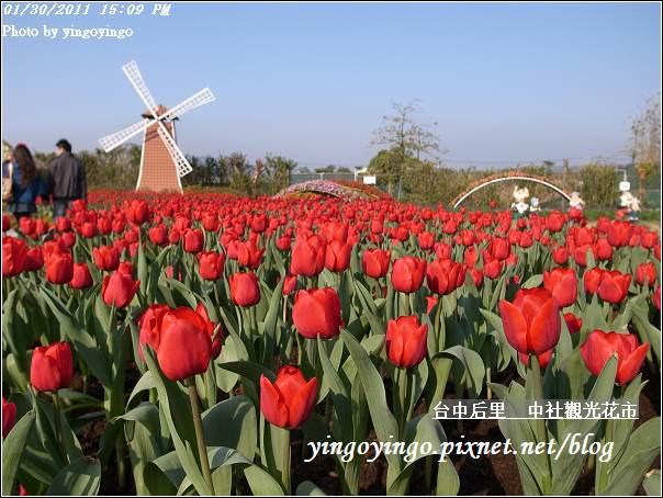 台中后里_中社光觀花市20110130_R0017653
