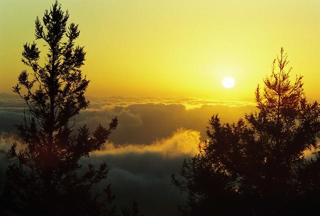 2011 Sunrise