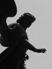 Bethesda IV (mirui77) Tags: park nyc angel central bethesda