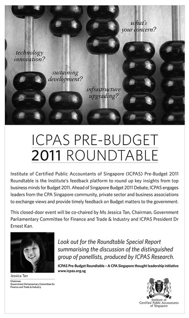ICPAS Pre-Budget 2011 Roundtable