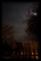 Orion (nigelnaturist) Tags: uk moon night stars iso orion 3200 pontefract lightroom