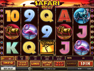 Safari Heat slot game online review