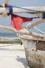 Ngalawa boat (detail) (mattermatters) Tags: detail beach island boat sand raw tropical tropicalisland zanzibar fishingboat whitesand stern outrigger