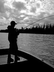 02.17 - How I Miss Alaska (BenjaminWalker) Tags: lake silhouette alaska project river photography fly rainbow fishing flickr ben walker chase how benjamin 365 trout february miss kenai 2011 i benjaminwalker 365project benwalkerphotographycom benwalkerbenjaminchasephotography skillack httpwwwbenwalkerphotographycom benwalkerphotography