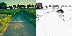 Summer/Winter (Cary Crusiau) Tags: silly nature landscape flickr belgium belgique tych belge