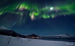 Dancing Queen (Ole C. Salomonsen) Tags: light moon norway canon landscape aurora northernlights auroraborealis dreamscape troms arcticlight