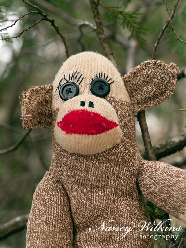 52/365 sock monkey
