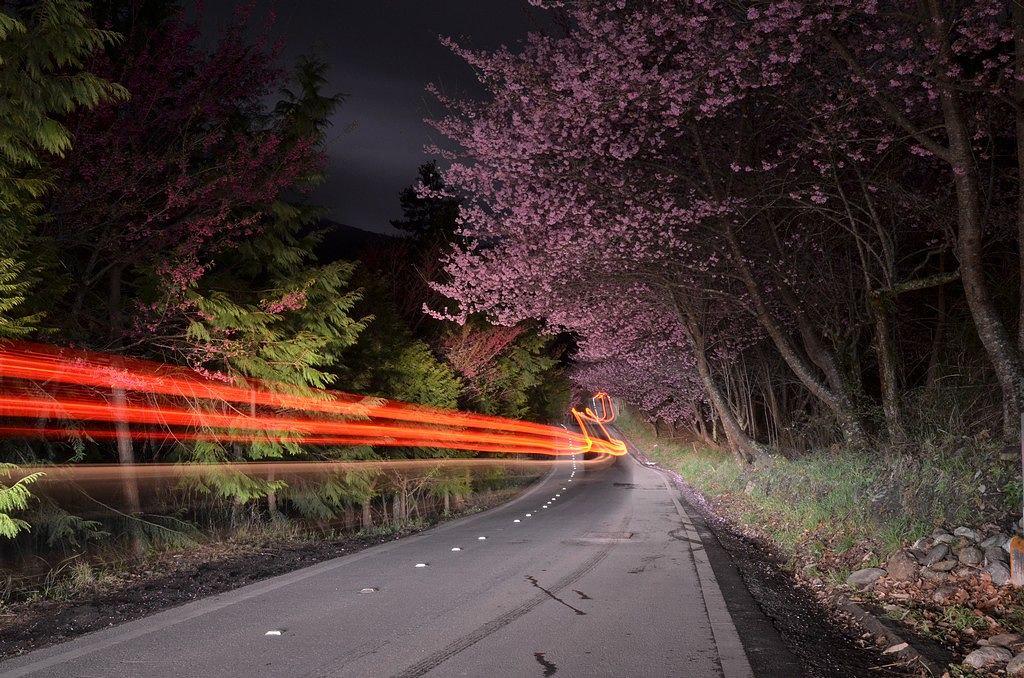 武 陵 夜 市