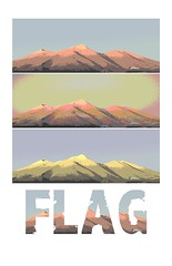 FlagPoster2