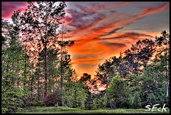 Sunset (Stephen Eckert) Tags: trees sunset sky clouds landscape evening colorful hdr highdynamicrange sunsetting