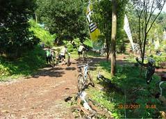 Gentus CC Banyuwangi (Endy).jpg051 (endymaskunanto) Tags: cc banyuwangi gentus