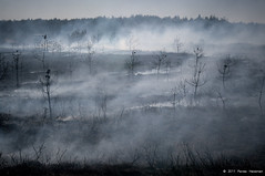 Skeleton Army (Rense Haveman) Tags: nature landscape fire smoke burning management veluwe heathland naturemanagement defensieterreinen askoldebroek