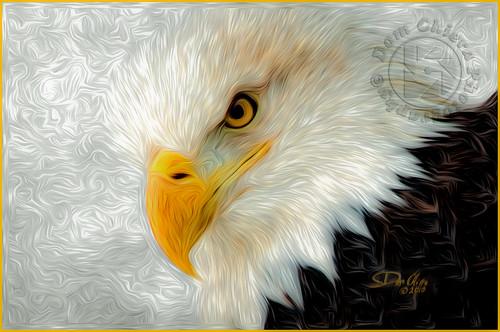 Eagle Art-
