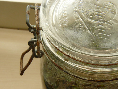 in the jar