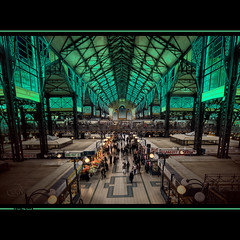 The Green Market Hall (Filip Nystedt) Tags: europa hungary market interior budapest soe markethall nagyvasarcsarnok goldcollection canon5dmarkii bestcapturesaoi mygearandme mygearandmepremium mygearandmebronze mygearandmesilver mygearandmegold canonef1635mm28liiusm
