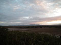 Ngorongoro Conservation Area - Tanzanie 2011 (211) (Valerie Hukalo) Tags: africa sunset animal tanzania wildlife ngorongoro coucherdesoleil afrique nationalparc sauvage faune olduvai tanzanie parcnational ngorongoroconservationarea tanapa olduvaicamp hukalo valriehukalo tanzanie2011