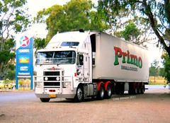 photo by secret squirrel (secret squirrel6) Tags: trees sleeping lunch cabin waiting photos gorgeous truckstop primo badge parked pan resting trailer scotts caltex loaded kw stopped spotlights toolbox kenworth cabover bullbar avenel aerodyne smallgoods ruralaustralia humehighway refridgerated triaxle roundheadlights bogiedrive squaretanks secretsquirreltrucks