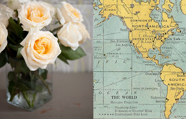 rose--map-11