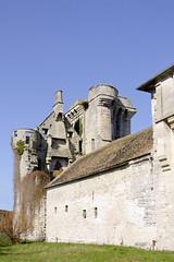 Vestiges (Ombre&Lumiere) Tags: iledefrance chteau patrimoine ruines vestiges seinemarne