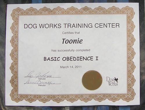 Doggie Diploma