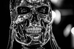 Terminator Face (awdylanis) Tags: robot orlando scary florida teeth evil universal cyborg terminator universalstudios redeyes theterminator skynet universalstudiosorlando model101 universalstudiosflorida t850 t800 endoskeleton metalendoskeleton cyberdynesystemsmodel101 skeletongrin artificialintelligencedefensenetwork 850seriesmodel101