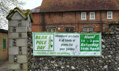 April 21st, 2014 - Banner advertising Bean Pole Day (karenblakeman) Tags: uk april caversham 2014 cavershamcourtgarden beanpoleday 2014pad