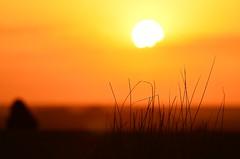 2011.08.24 06.02.14.jpg (Valentino Zangara) Tags: desert flickr morocco sunrise mtis meknstafilalet marocco ma