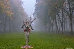Her Majesty autumn (Elen_L) Tags: 2016 kharkov park september ukraine autumn beauty city fog landscape morning nature naturewakesup