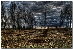 In the middle of nowhere (sergio.pereira.gonzalez) Tags: photoshop landscape spain champs paisaje espana campo paysage espagne hdr villar castillayleon photomatix tonemapping canon400d sergiopereiragonzalez