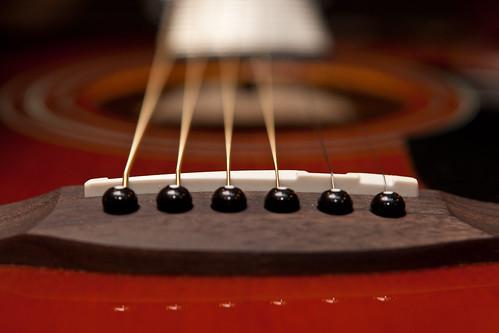 Fender Guitar-9221.jpg