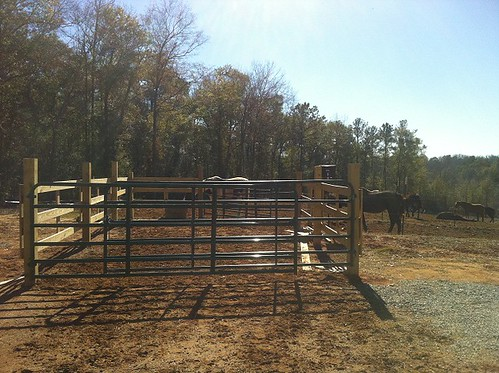 The gating system to the pasture. The double gates creat a passage to the barn when they are open.