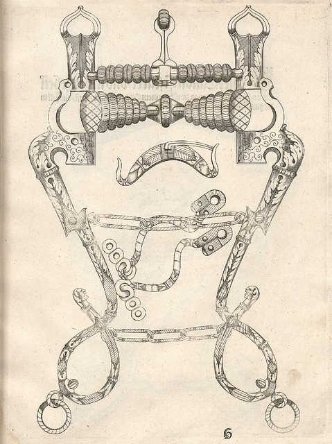 Pferdegebisse by Mang Seuter, 1614 (5)