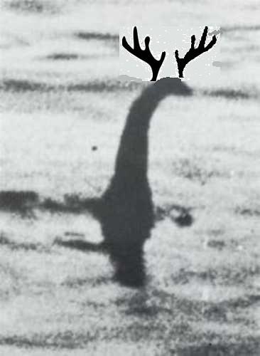 Loch Ness Brachie from Jack