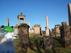 Tavo in Scotland! (nkawai) Tags: wonder scotland wanda holidays edinburgh glasgow frog tavo