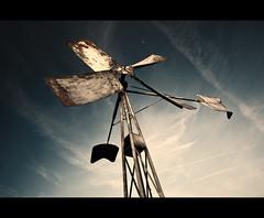 Little wind mill (Focusje (tammostrijker.photodeck.com)) Tags: holland mill netherlands dutch wind vane oudhoornpad