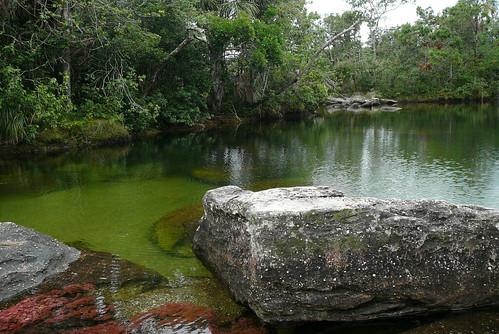 Caño Cristales - Río de Aguas Claras